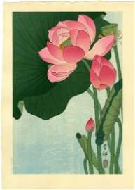 Koson Ohara: Flowering Lotus 1930s Woodblock