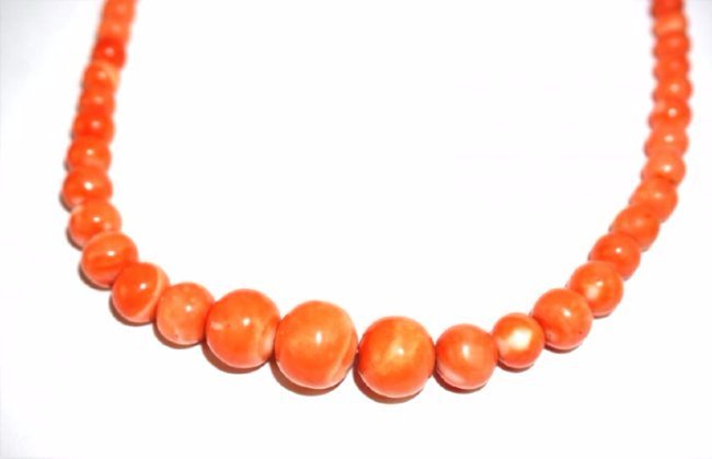 ANTIQUE CORAL BEAD & 14K GOLD NECKLACE - 2
