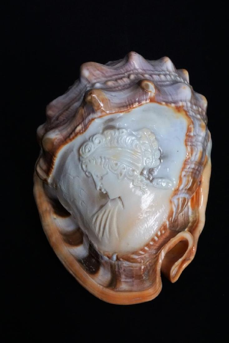 VINTAGE HAND CARVED CONCH SHELL CAMEO
