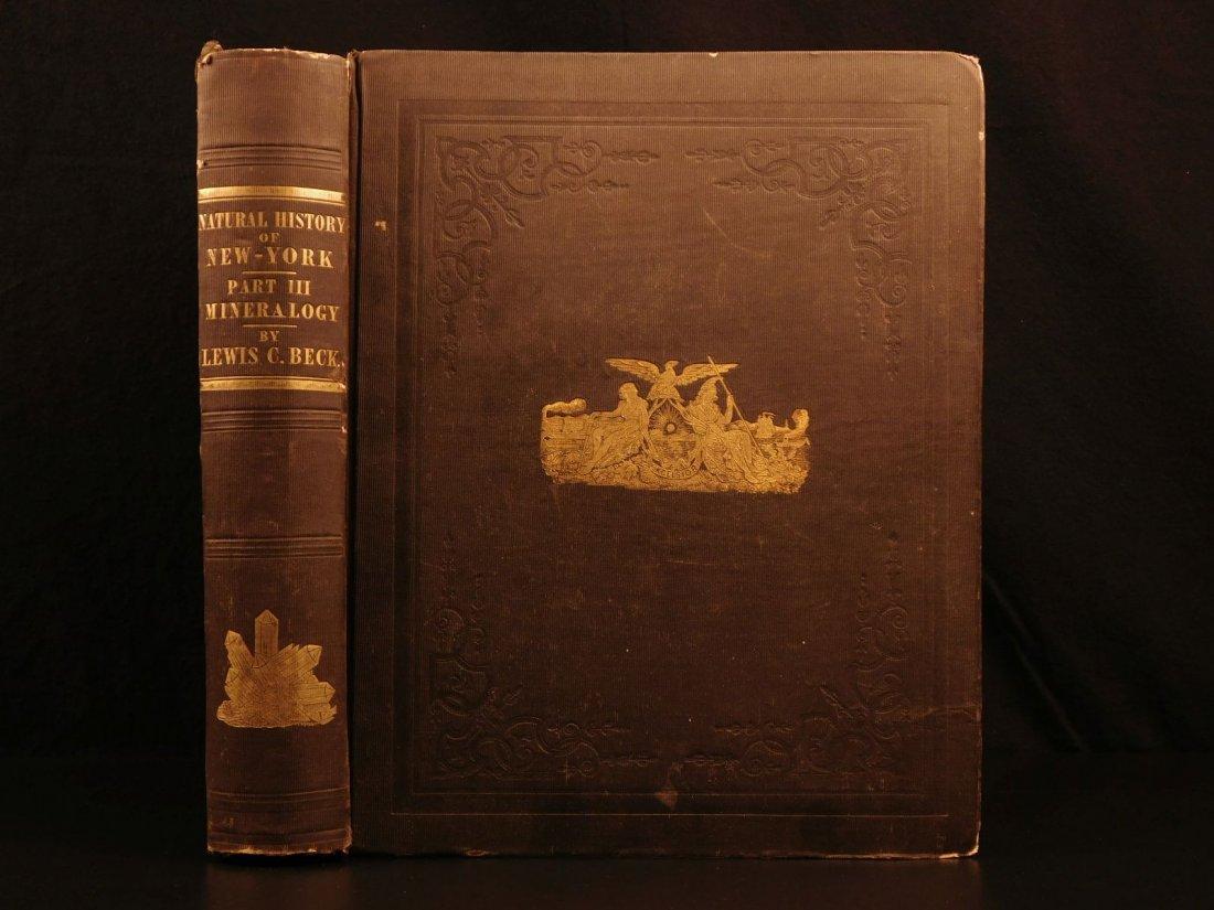 1842 NEW YORK Natural History Minerology Geology