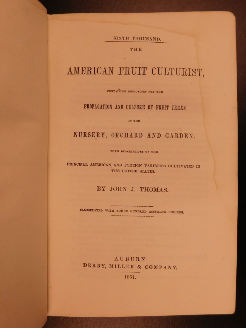 1851 American Wines Fruit Culturist Horticulture Botany - 2