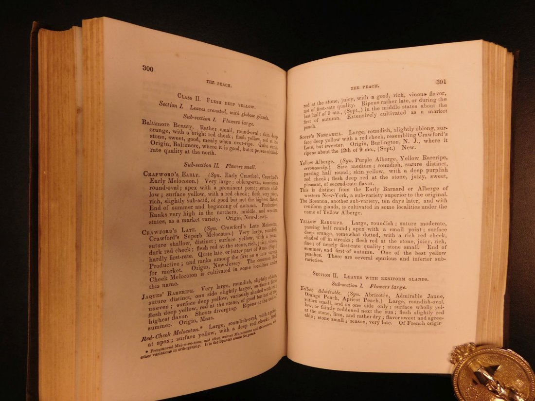 1851 American Wines Fruit Culturist Horticulture Botany - 7