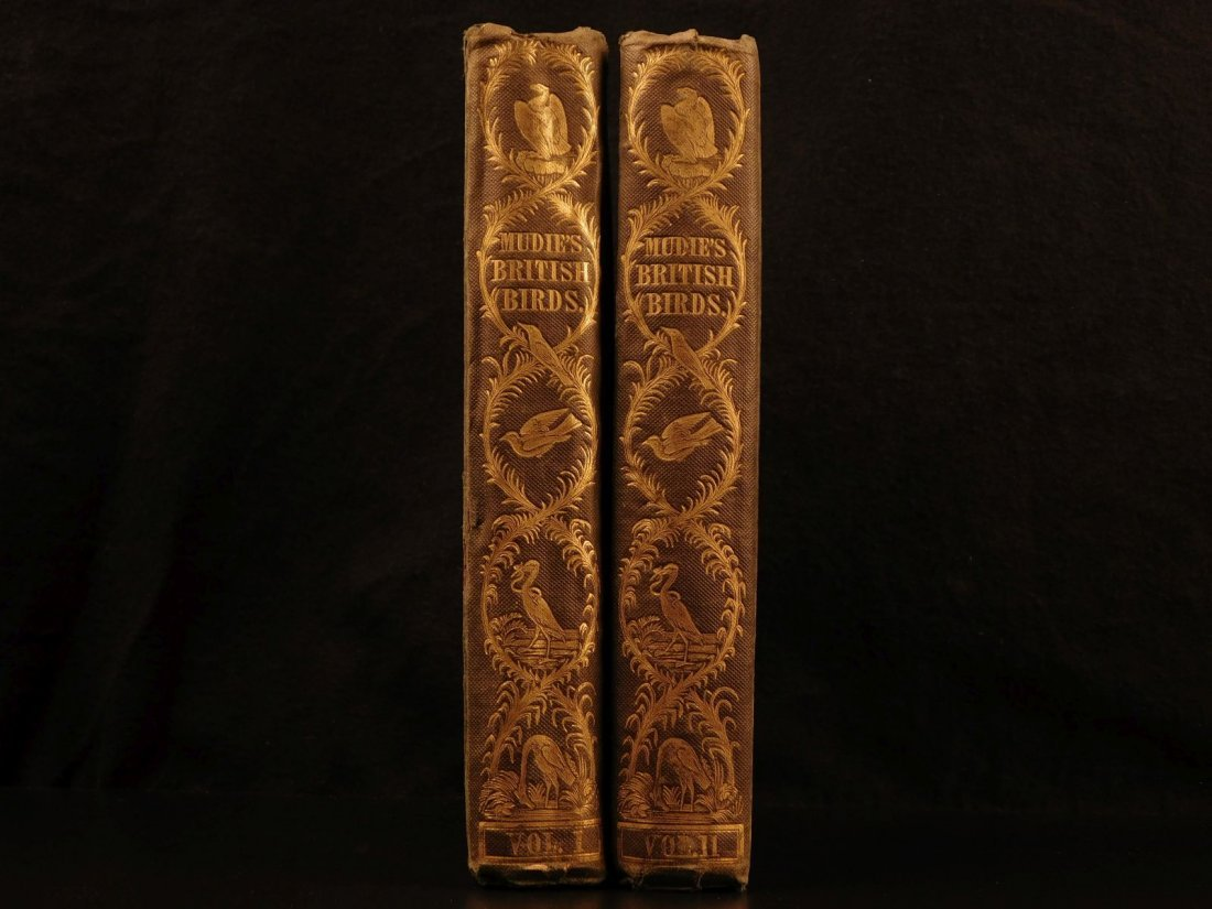 1841 Feathered Tribes of Britain Mudie BIRDS