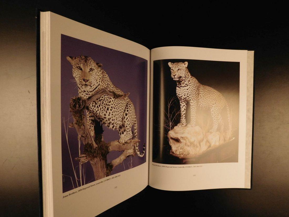 2006 Boddington's Leopard AFRICAN Safari Hunting - 10