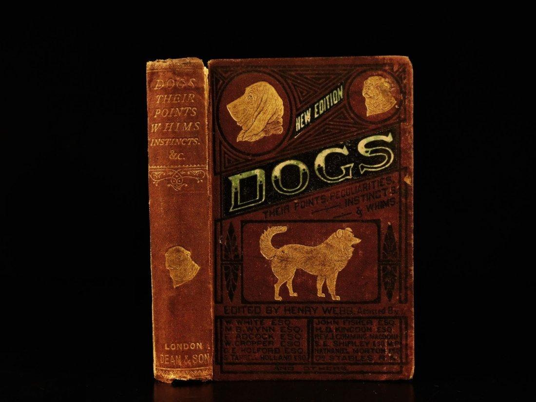 1873 DOGS Dog Shows Breeding Illustrated Animals