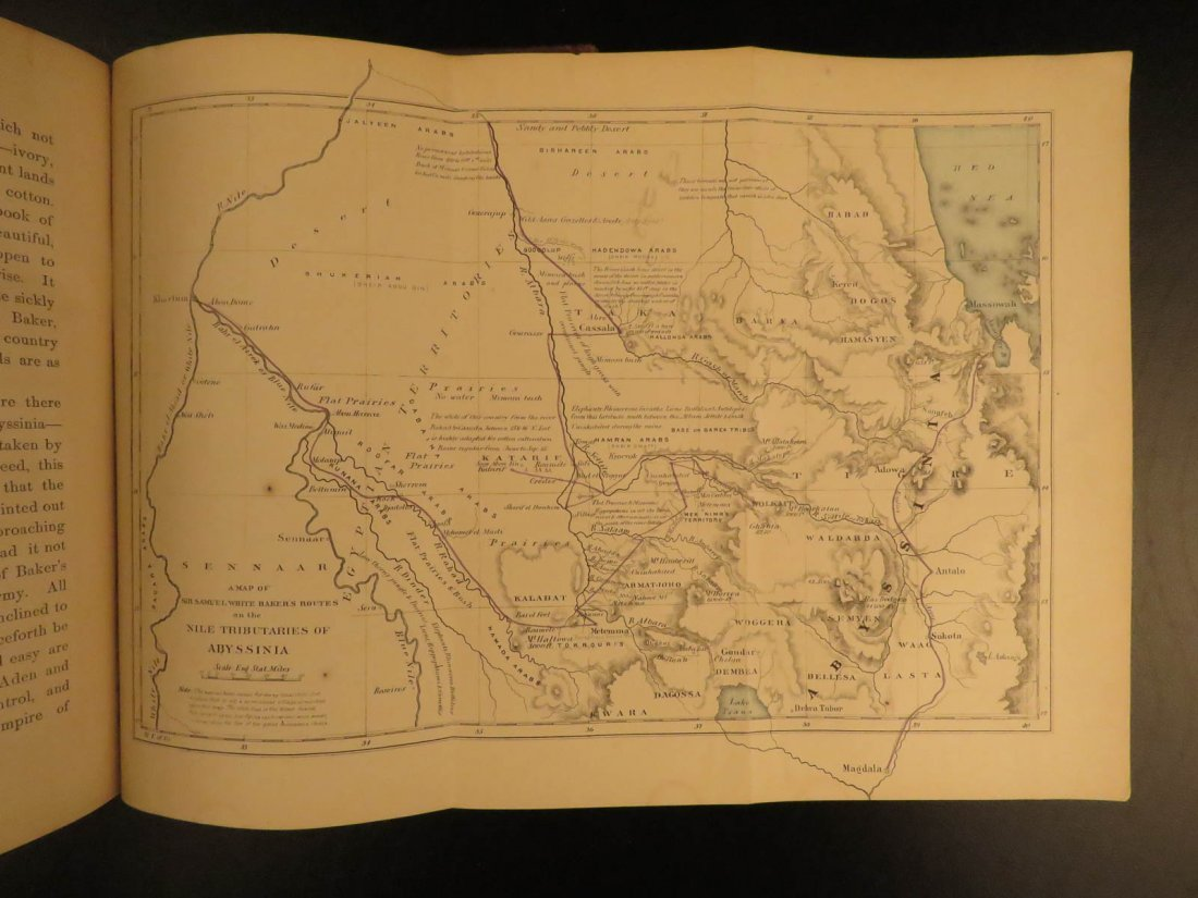 1868 Baker Exploration of Nile Tributaries Africa Egypt - 10
