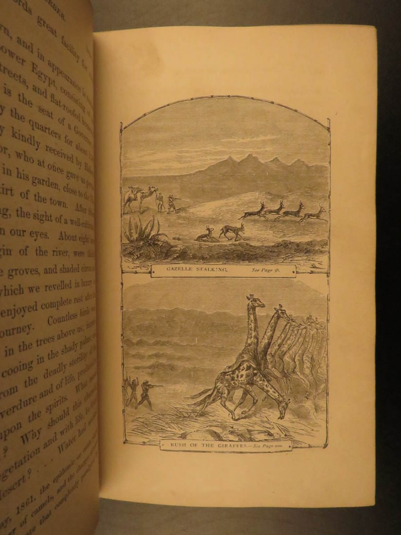 1868 Baker Exploration of Nile Tributaries Africa Egypt - 5