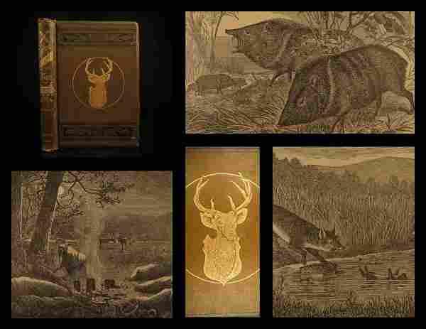 1890 Practical Taxidermy HUNTING Joseph Batty Natural