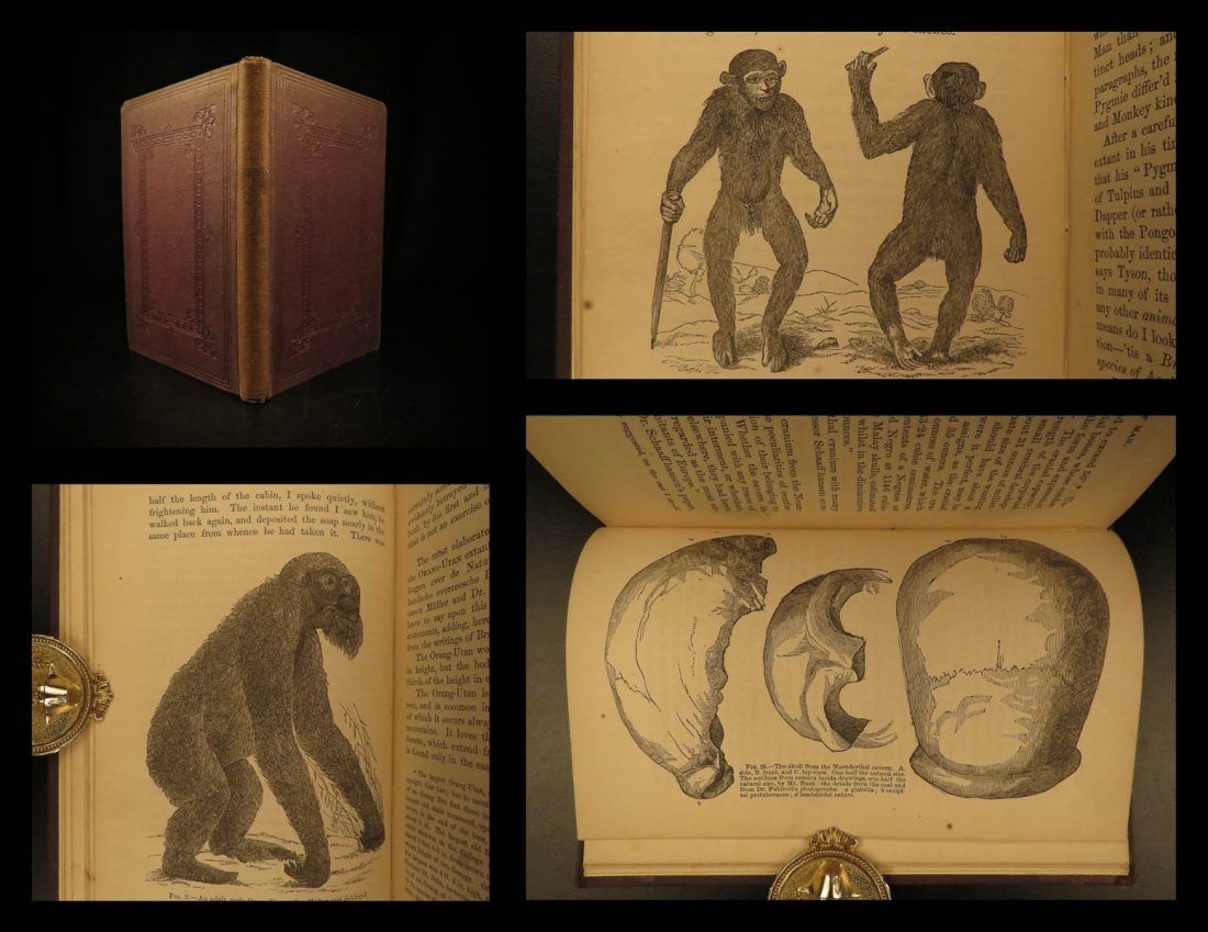 1872 Thomas Huxley Man's Place in Nature EVOLUTION