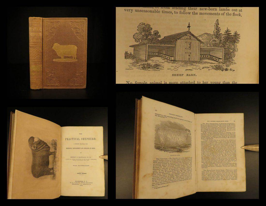 1863 SHEEP Practical Shepherd Randall Diseases