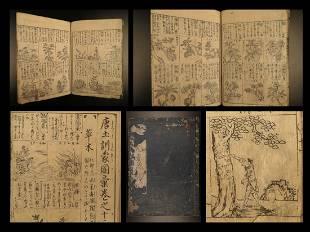 1719 Japanese Botany Chinese Encyclopedia Herbal