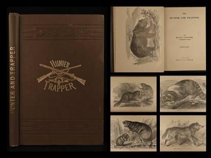 1868 1ed Hunter & Trapper BEAR Hunting Illustrated