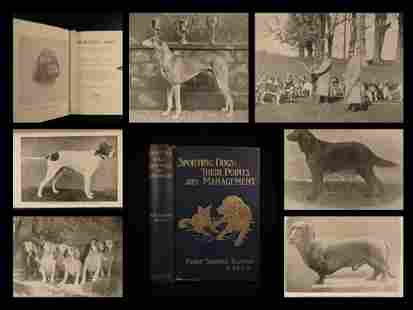 1905 1ed Sporting DOGS Hunting Domestic Pets Animal