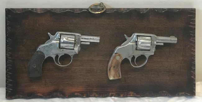 Two Art Decor American Guns Frame mounted.,