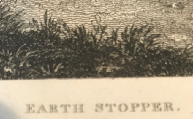 W. Cooperpinx and F.R. Scott: Earth Stopper Engraving - 3