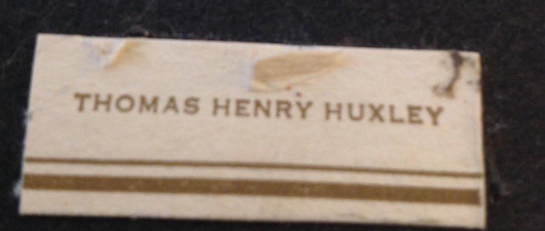 THOMAS HENRY HUXLEY SPY SERIES 1930- PRINT 10 X 13 - 4