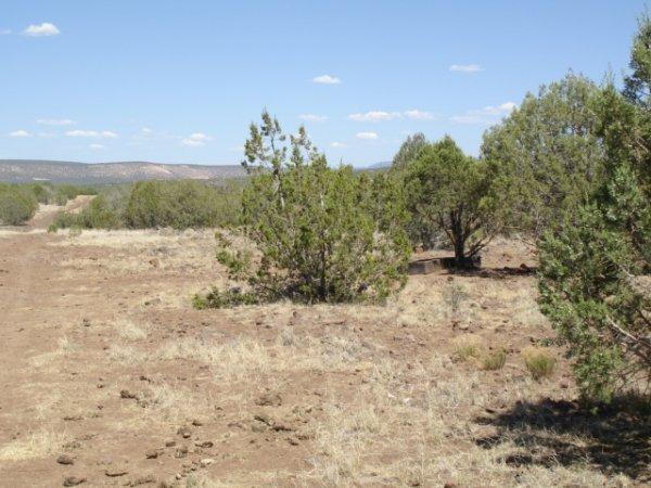 10: Parcel # 206-10-063 -Kaibab Knolls Estates, Arizona