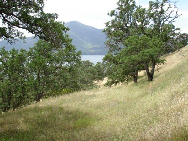 16: Parcel #036-303-220-000, Clearlake Park, California