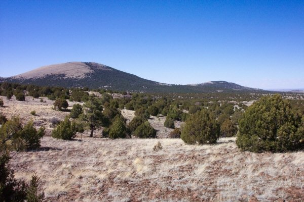 18: Parcel # 207-54-029 -Bell Brand Ranches, Arizona