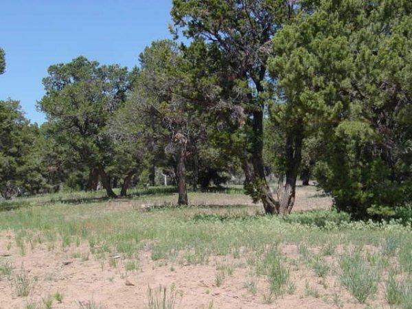 22: Acct #00-0027-5531, 10 acres,Duchesne, Utah