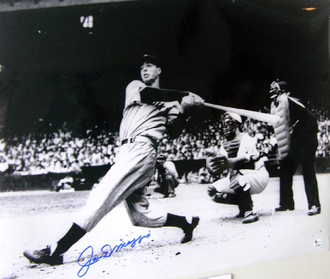 "memorabilia ""Yankee Collage"" Mickey Mantle & Joe"