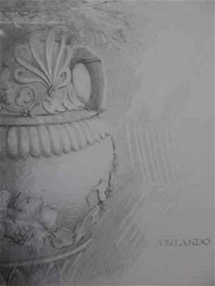 Orlando Vase Original Pencil Drawning