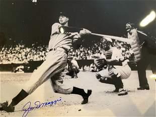 Yankee Clipper Joe Dimaggio 16x20 Autograph