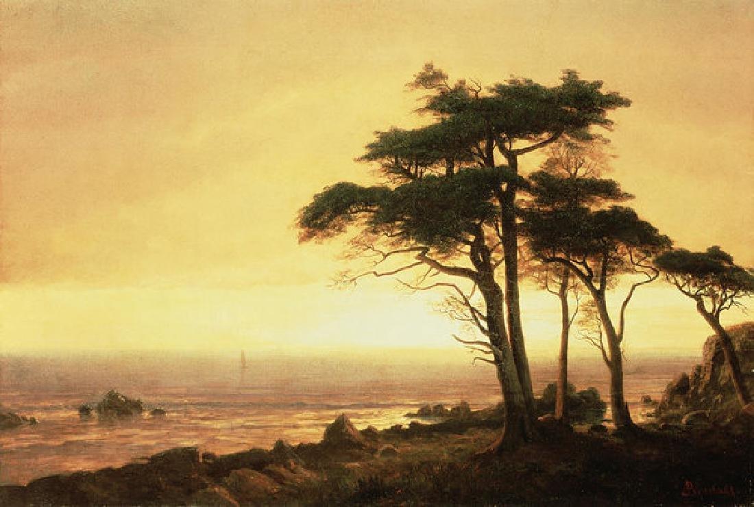California Coast Oil Painting on Canvas