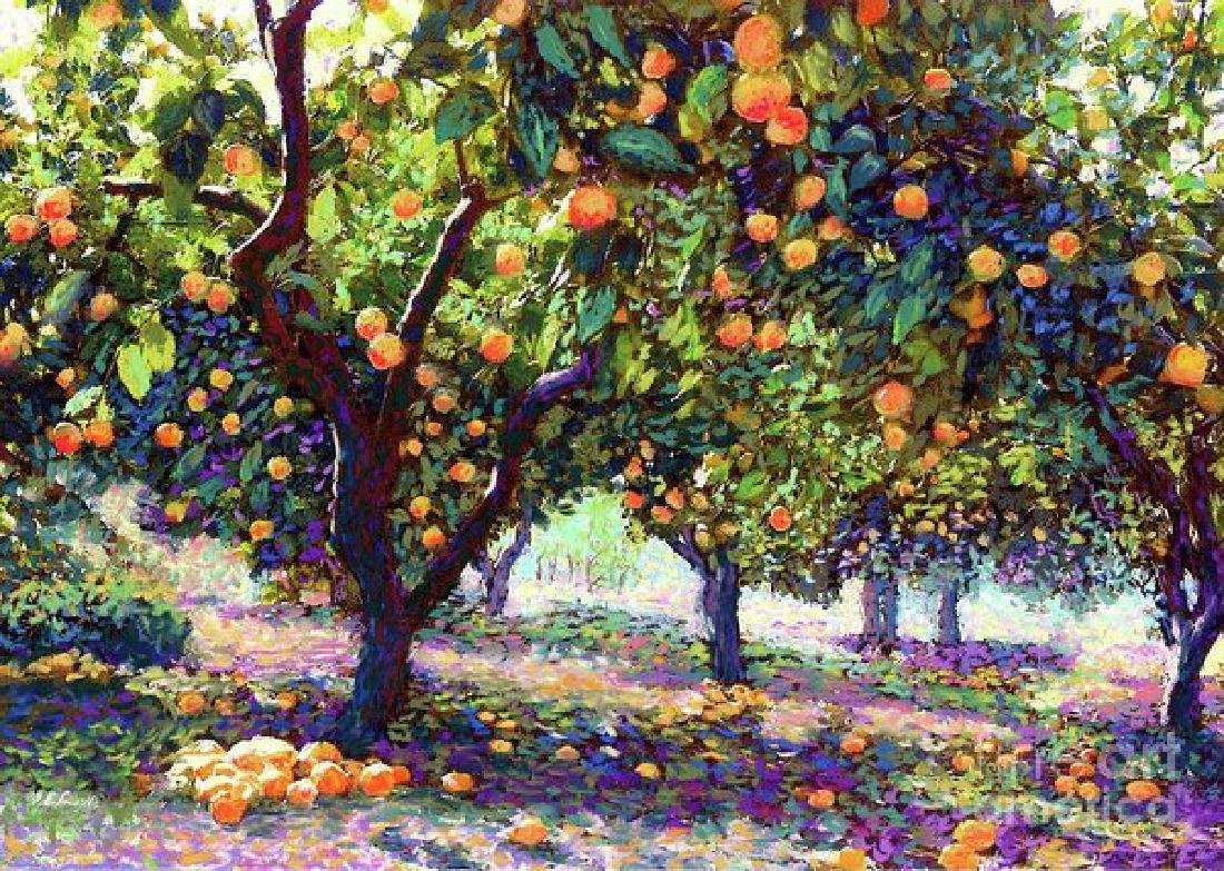 Orange Grove Of Citrus Fruit Trees Oil Painting