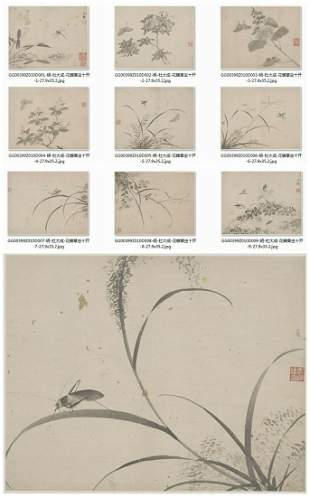 Ming dynasty flora and butterfly painting booklet by Du