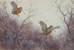 Aiden Lassell Ripley Watercolor Painting of Woodcocks