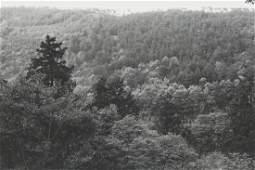 "Lee Friedlander ""Kyoto"" Photograph"