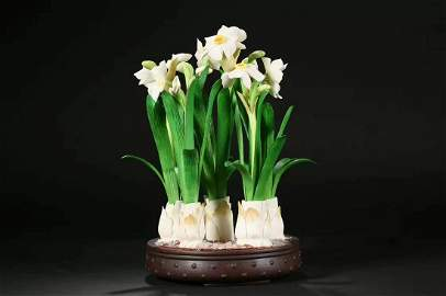Narcissus with bone carving boutique
