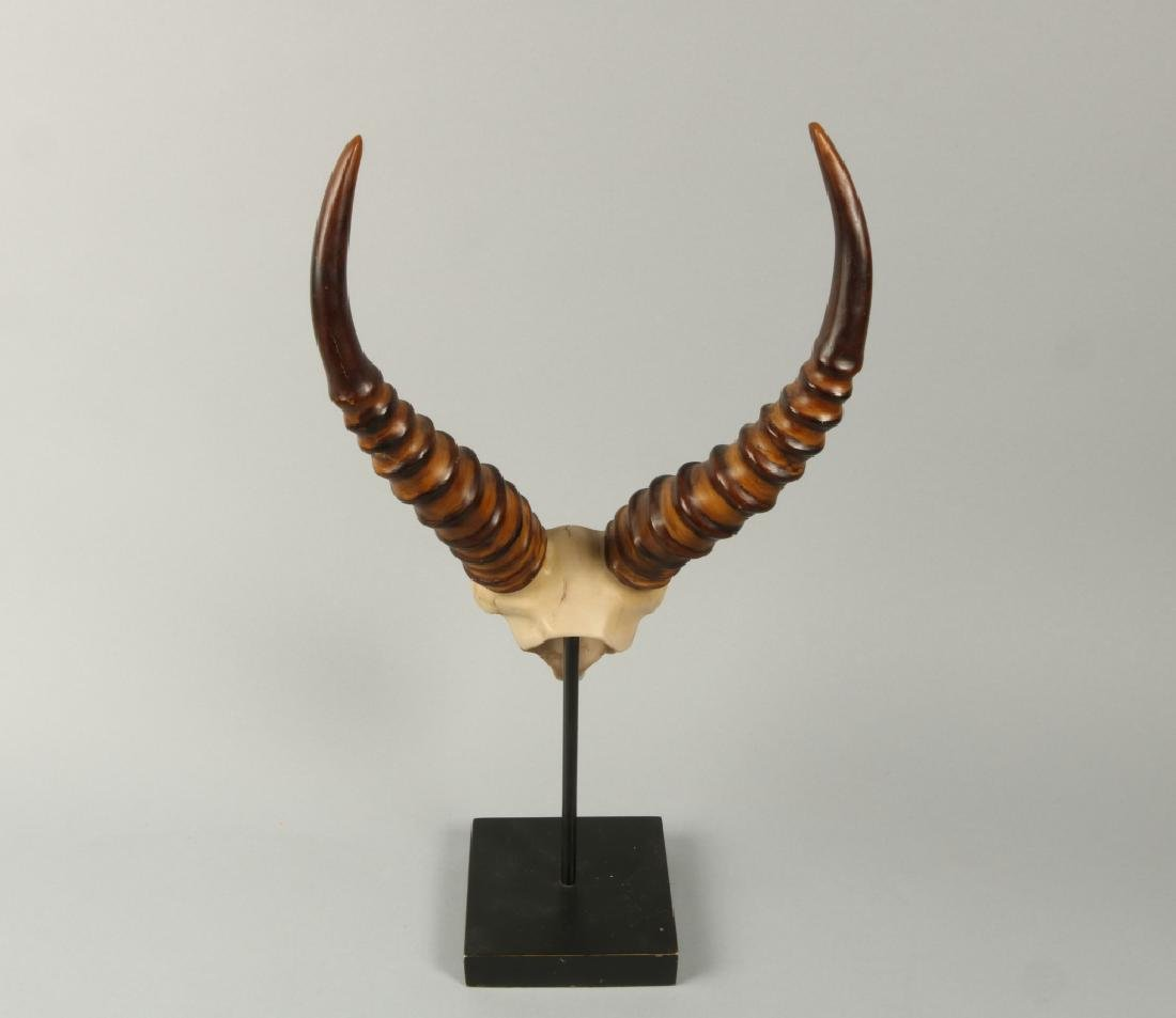 Small gezzell skull on stand - 2