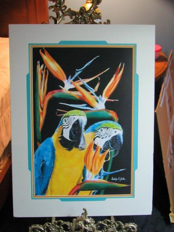 Macaw Print Signed Jennifer C. Smith & numbered 29/950