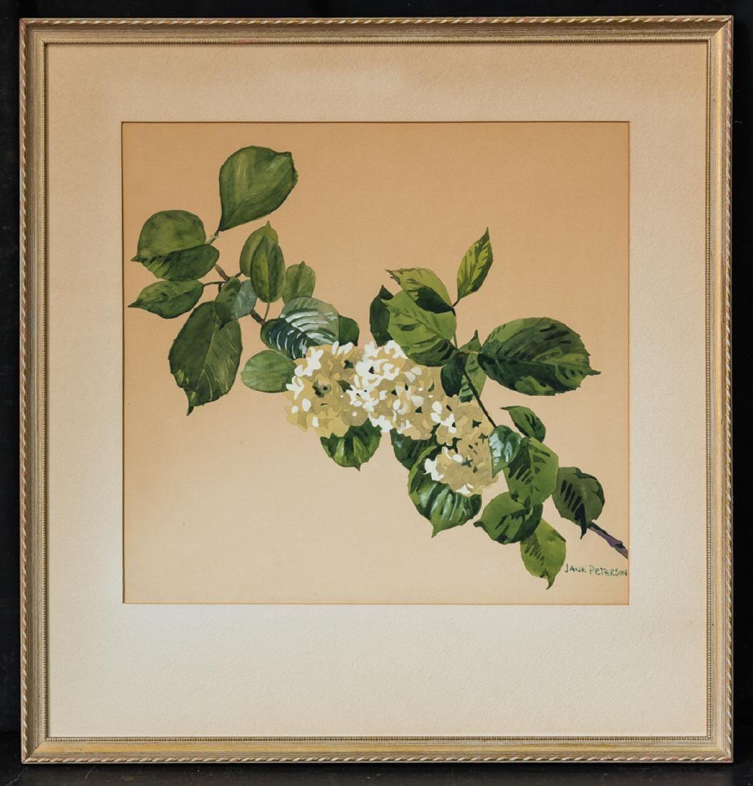 Jane Peterson (1876 - 1965) MA/NY Artist Watercolor