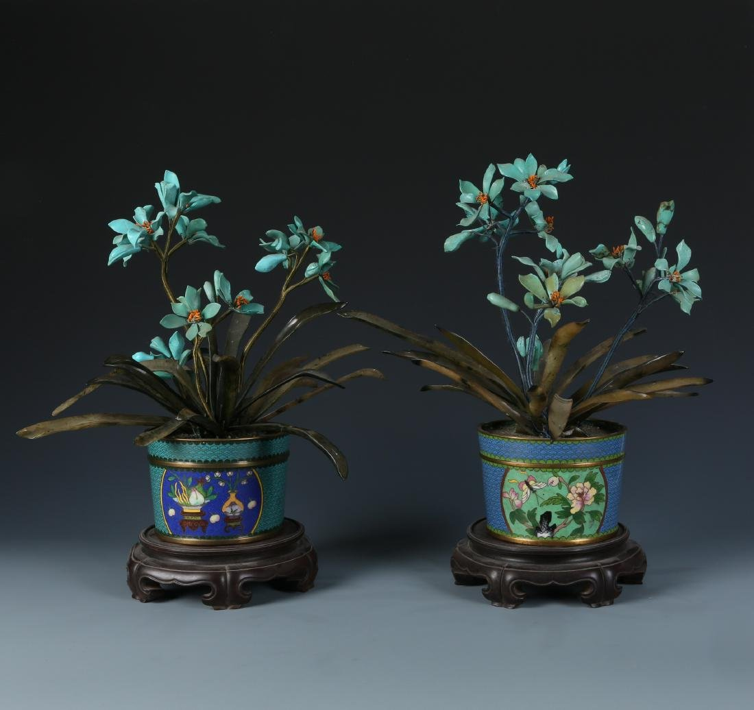 Miniascape of Green Jade Coral and Turquoise