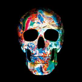 9 Dimensions of the Skull II | Unframed Gold Edition