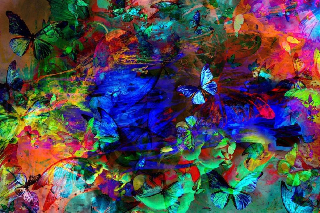 Butterfly Effect III | Unframed Gold Edition