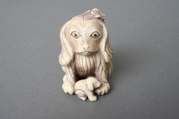 16: Ivory Carving of a Spaniel Dog