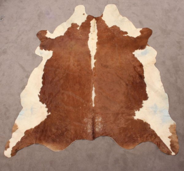 409: Brown and Cream Cow Pelt