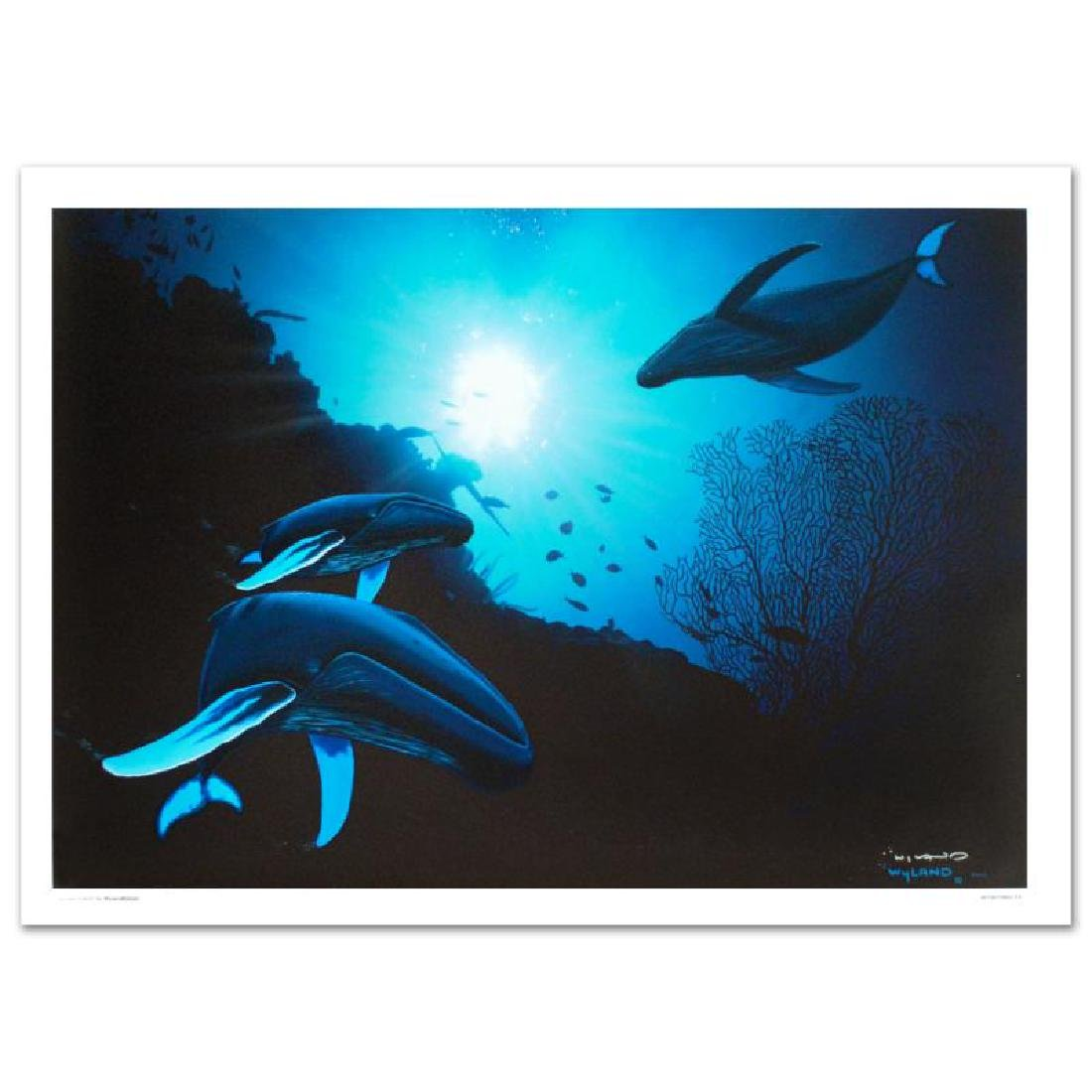 """Wyland """"Whale Vision"""" Giclee"""