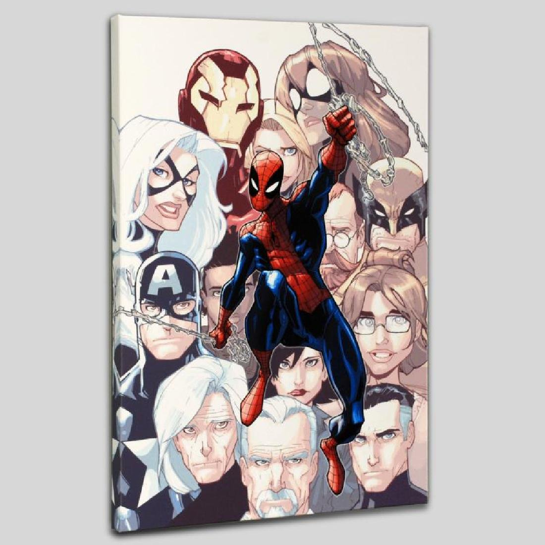 """""""The Amazing Spider-Man #648"""" Limited Edition Giclee on"""