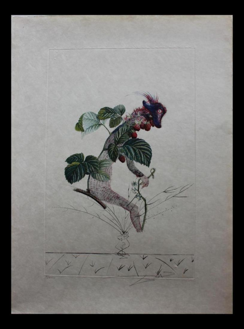 "Salvador Dali ""Framboisier"" (Raspberry) FlorDali / Les"
