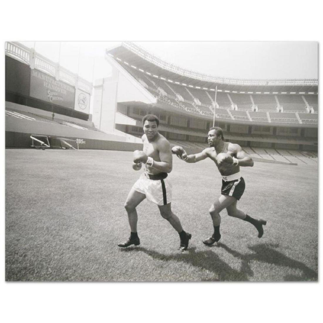 "Muhammad Ali and Ken Norton! Licensed Photograph (40"" x"