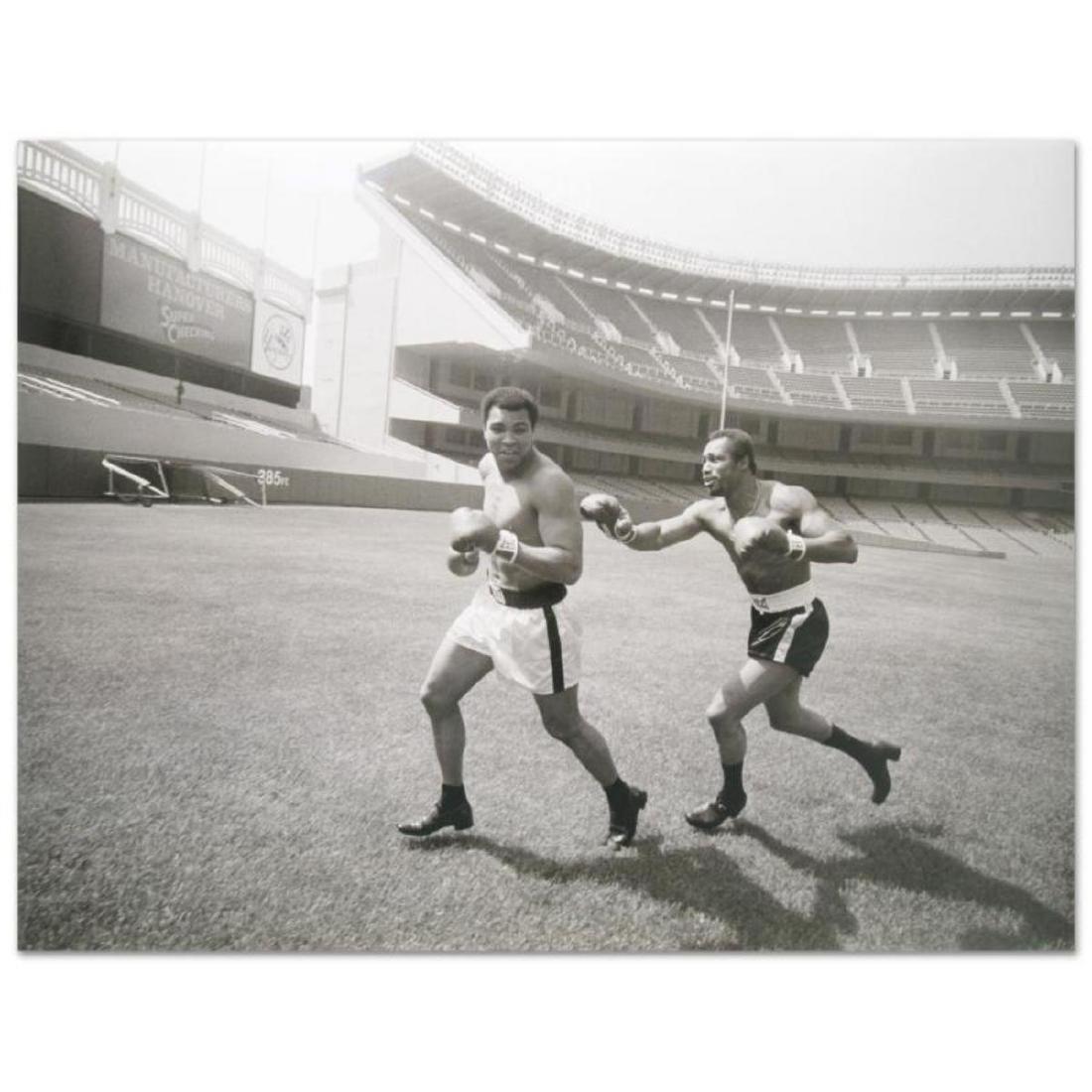 "Muhammad Ali and Ken Norton! Licensed Photograph (40"" x"