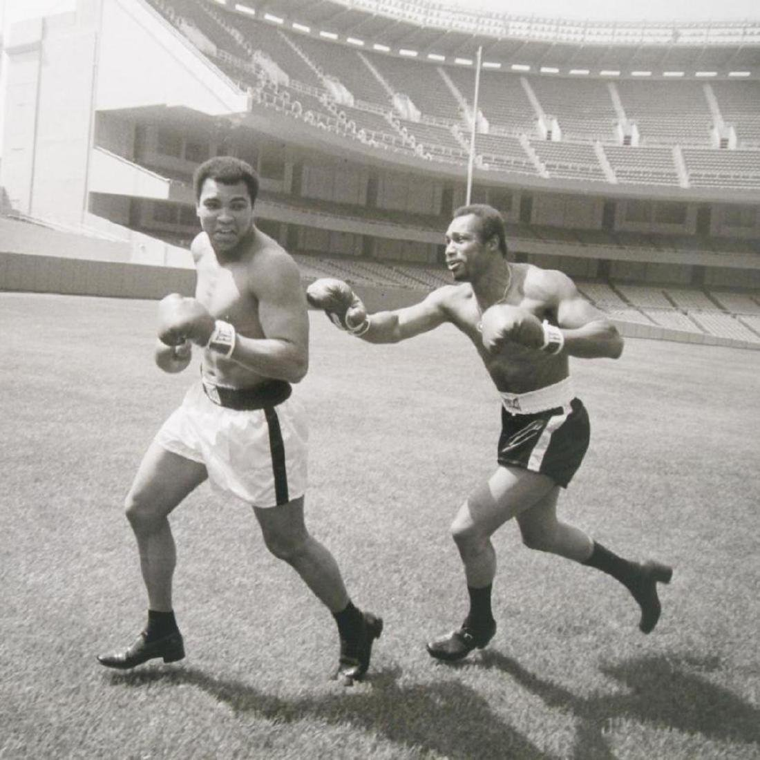 "Muhammad Ali and Ken Norton! Licensed Photograph (40"" x - 2"