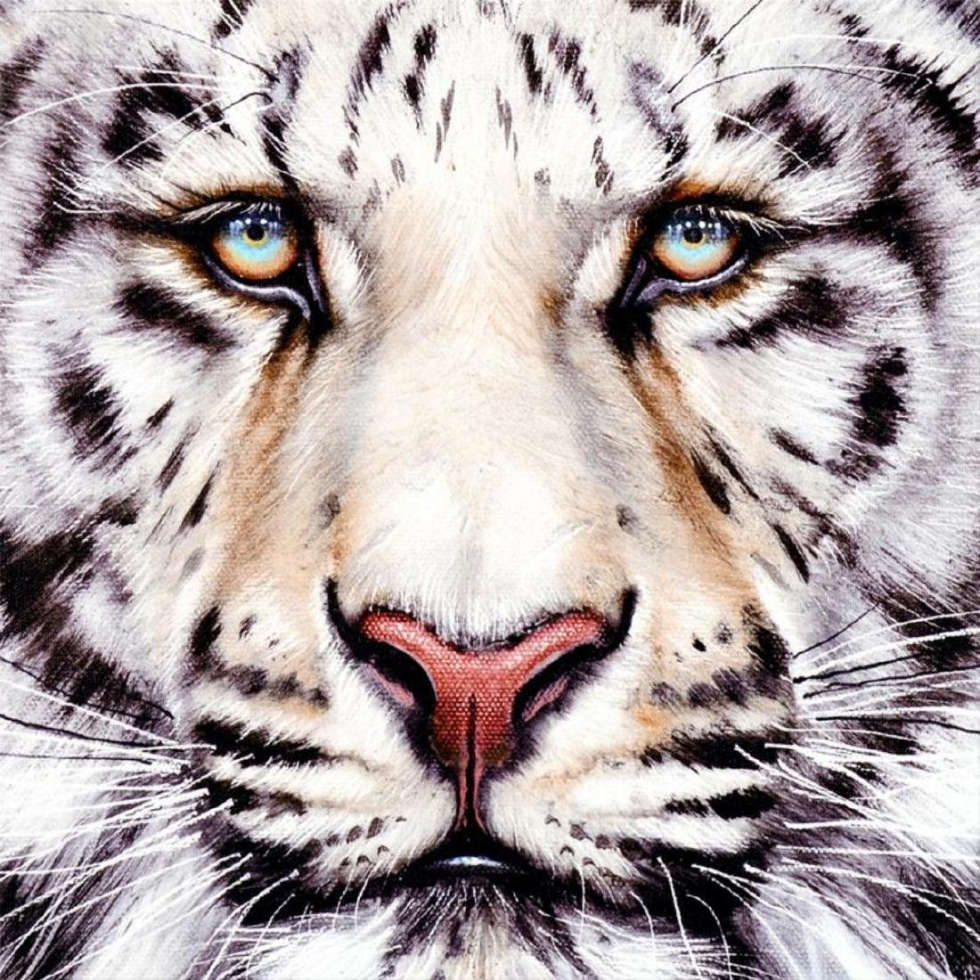 """""""Bengal"""" Limited Edition Giclee on Canvas by Martin - 2"""