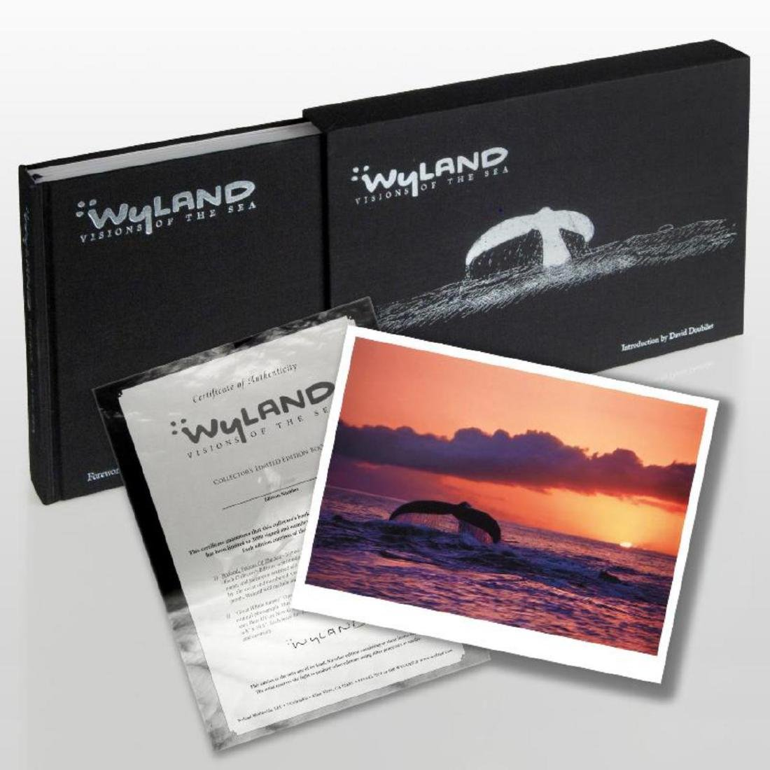 """""""Wyland: Visions Of The Sea"""" (2008) Limited Edition"""