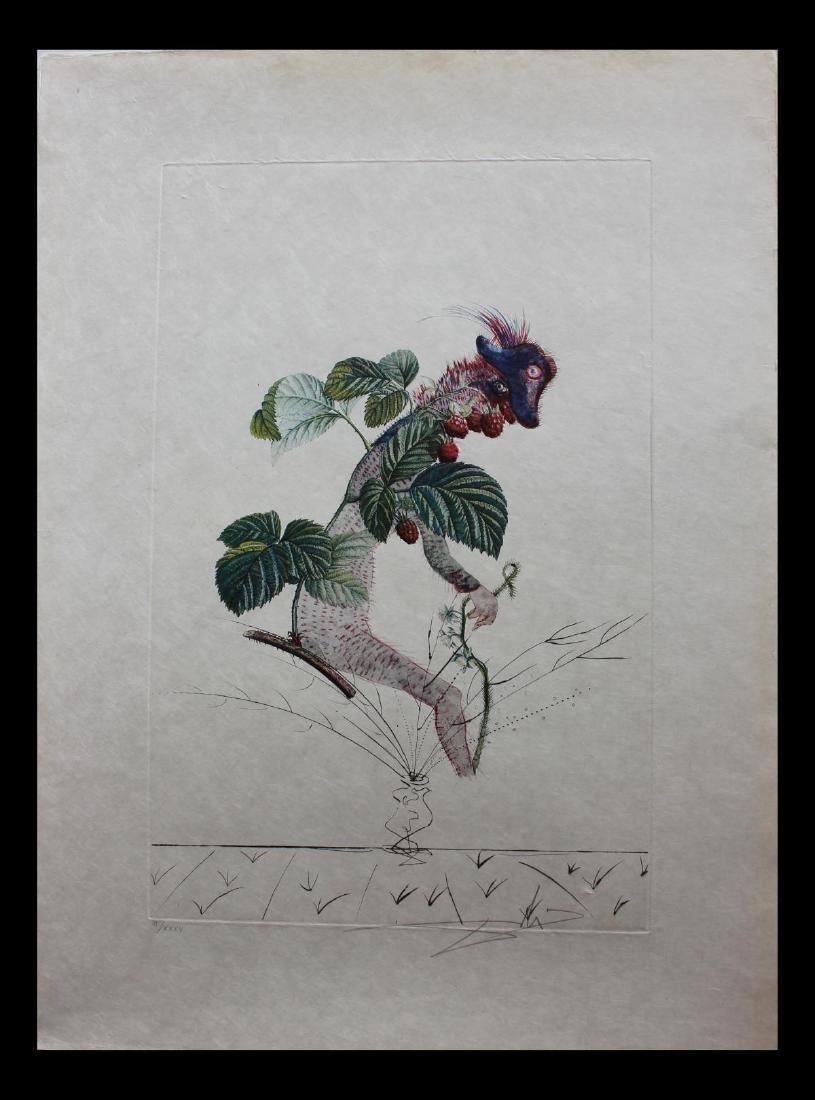 Salvador Dali- Photolithograph with original engraving
